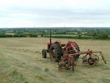 MF35 hay turning
