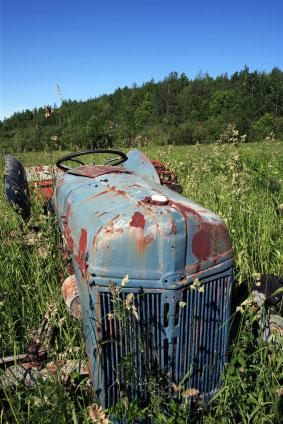 Old ferguson tractor